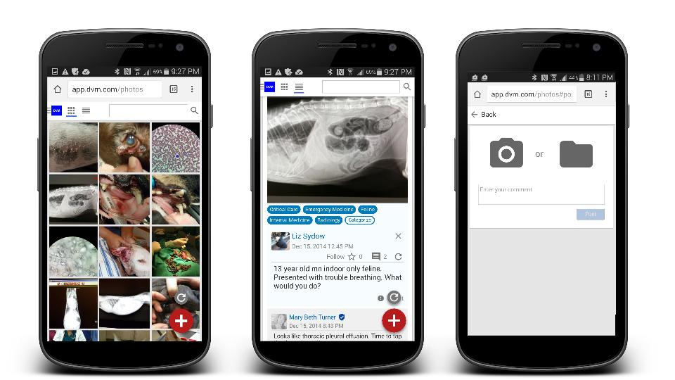 Photo View - Timeline View -Upload Images