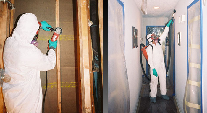 mold remediation encore inc Mold Removal Bleach it is our goal to provide quick remediation services so you may return to business as soon as possible