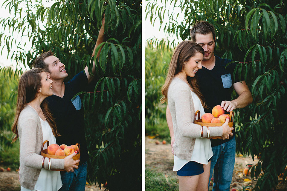 The Brauns Engagements 21 St Louis Peach Picking.jpg