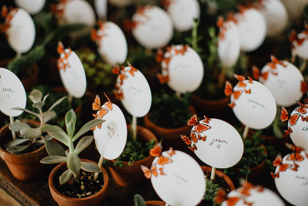 Cactus and Succulent Wedding Favors and Table Numbers