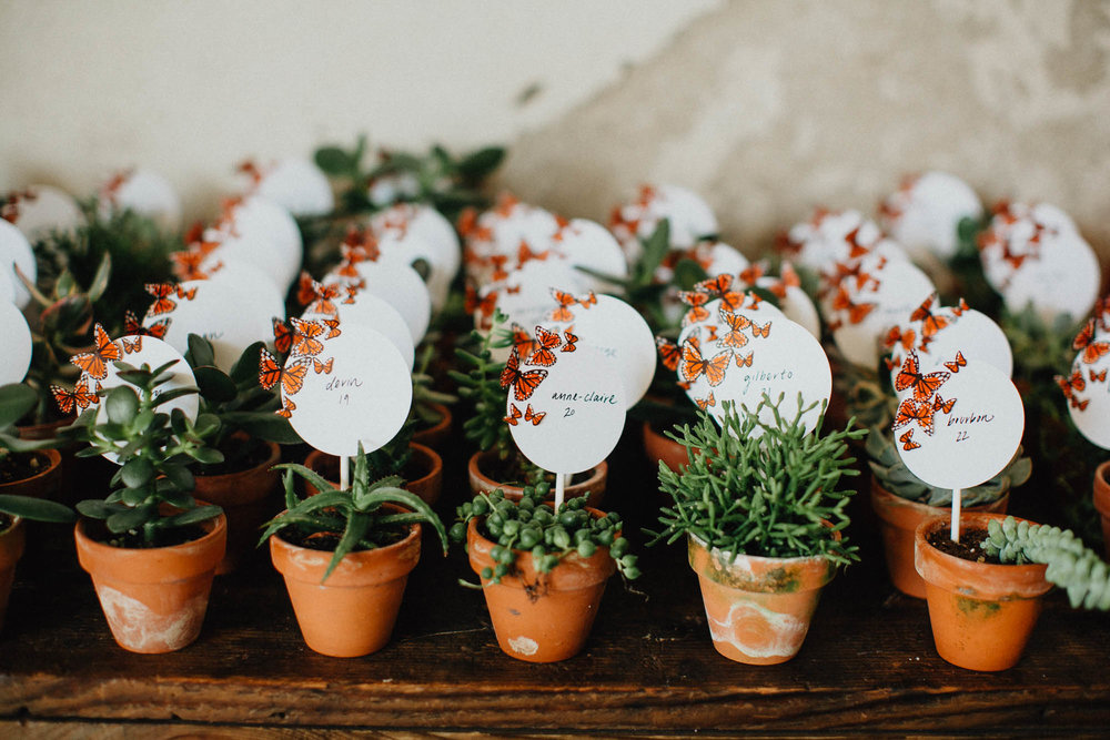 Cactus and Succulent Wedding Favors and Table Numbers at Strongwater