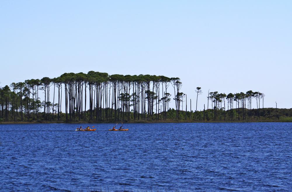 WaterColor_Canoe.jpg
