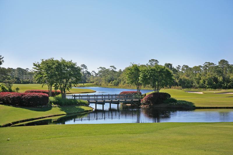 La Florida. April 6th2011 313.JPG