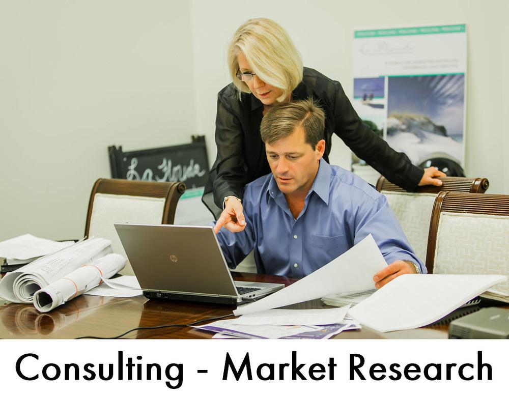 La Flarida Consulting and Market Research