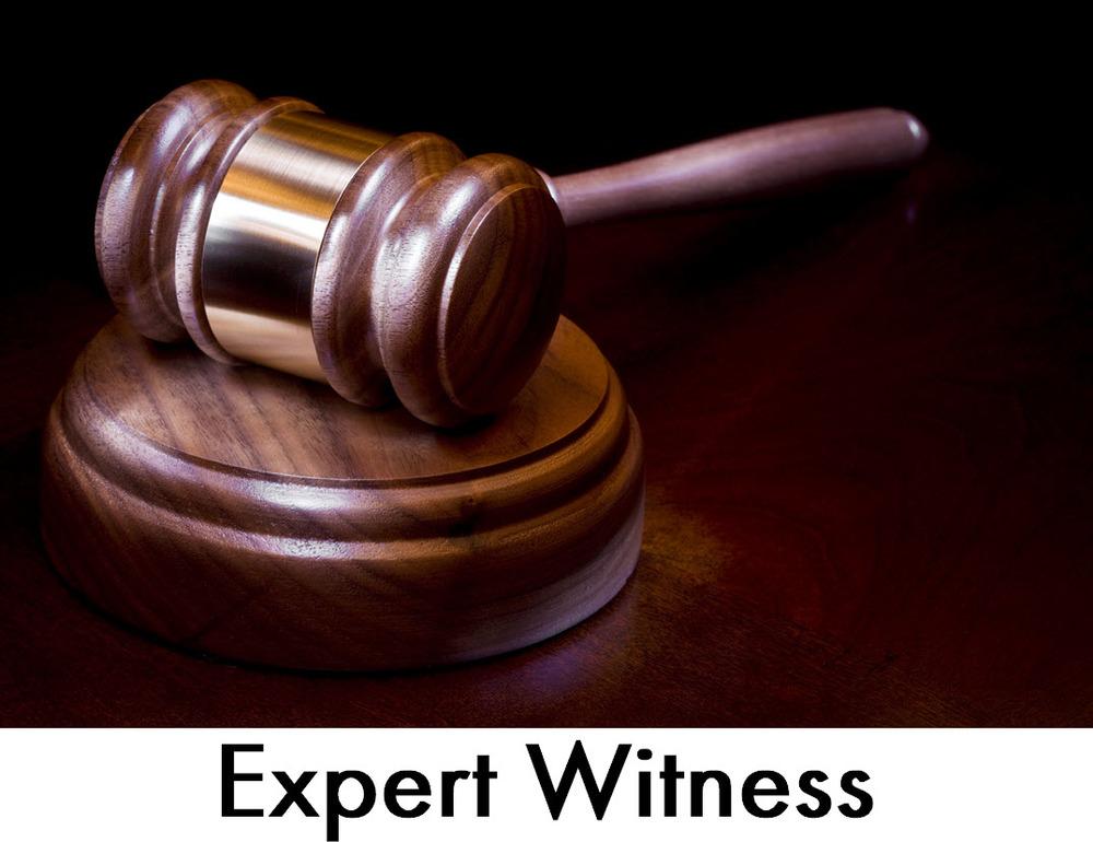 La Florida Expert Witness