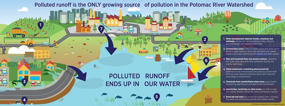 When we pave over the land, pollution ends up in our water.