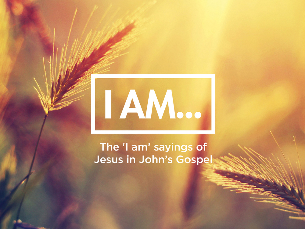 I AM -View series