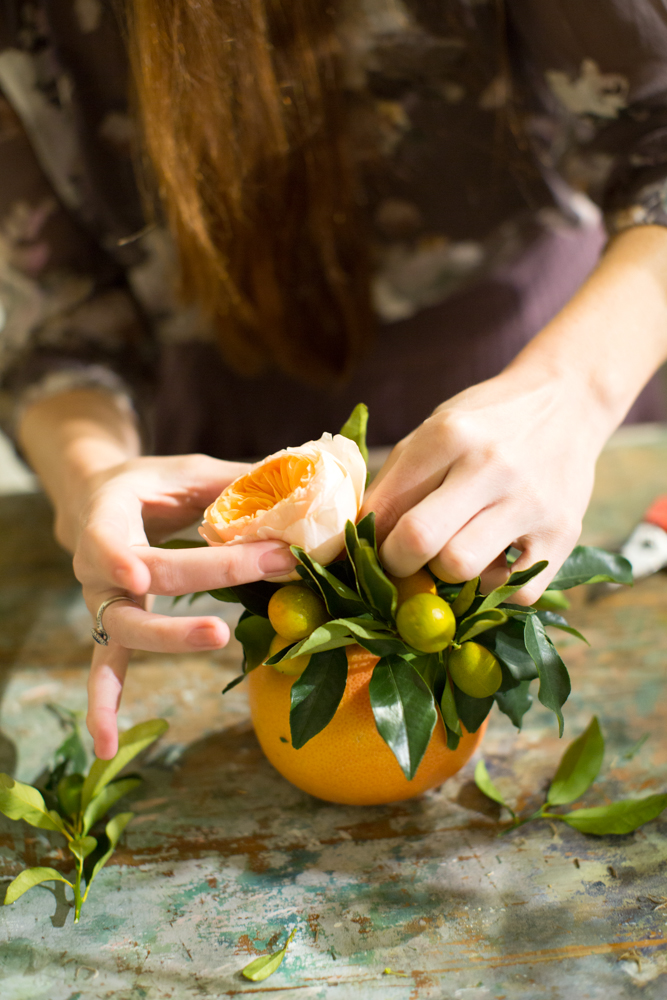 BloomOfTime_CPPhoto_DIY_Grapefruit-6.jpg