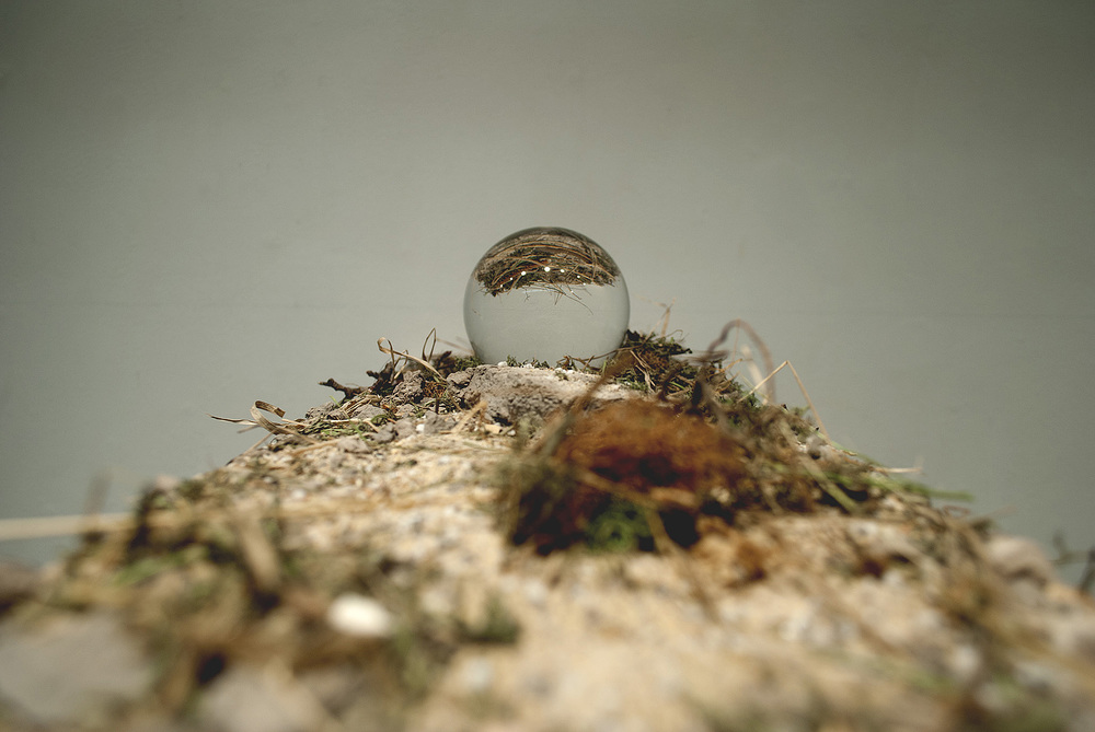 Elevation Series #7  wood, glass, moss, grass, silica sand, ceramic shards | $100