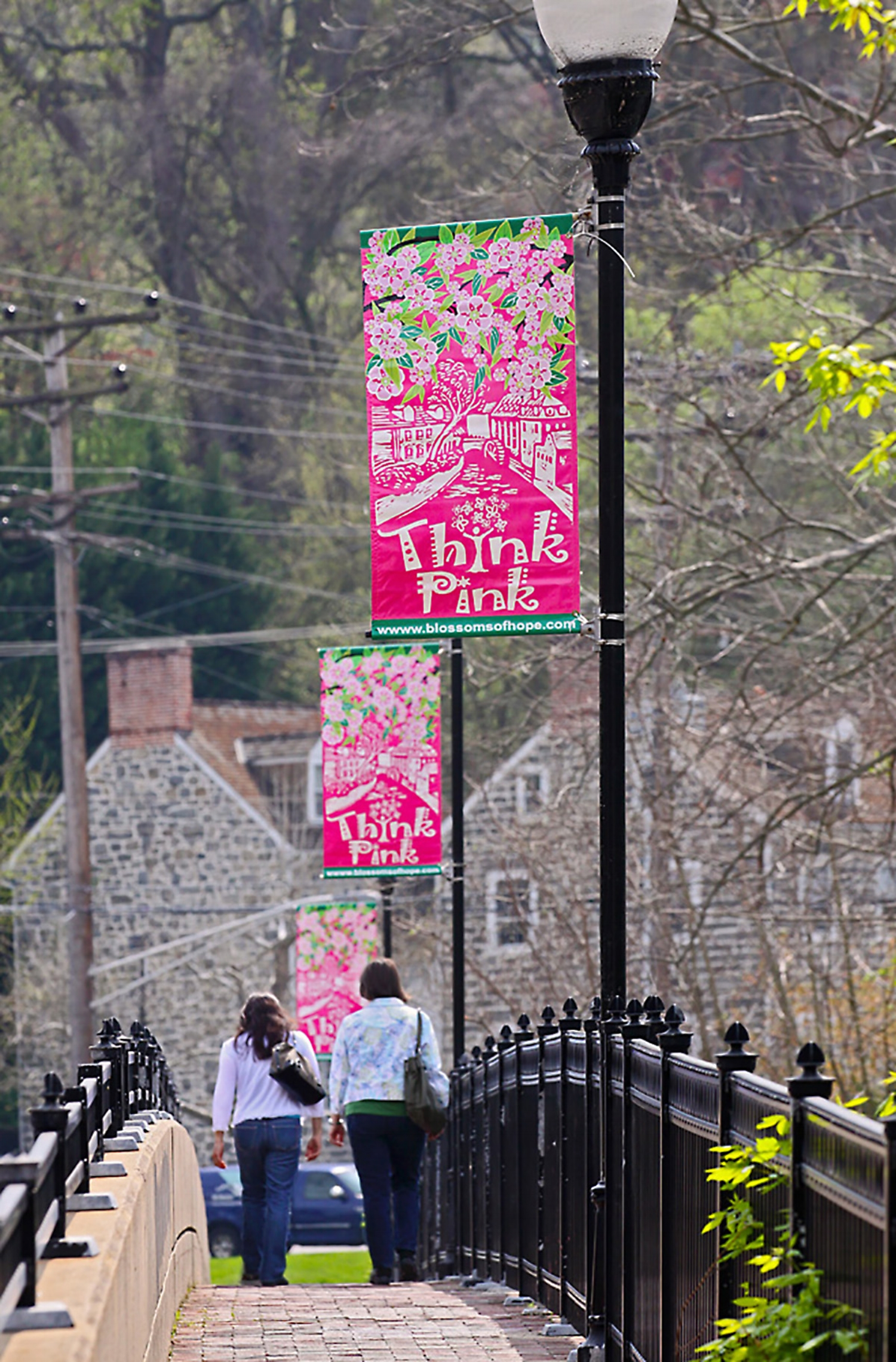 Think Pink banners Cherrybration Days in Ellicot City