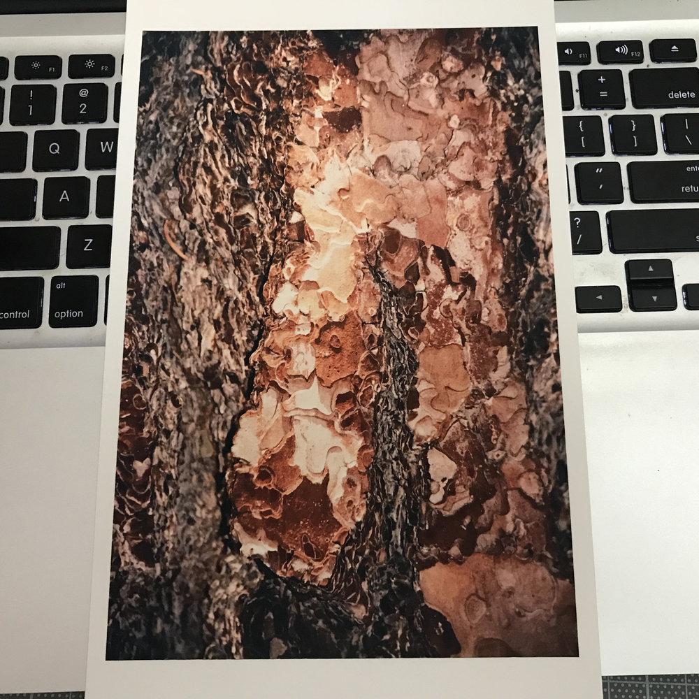 Kristina Simonsen Print Sale #_5054.jpg