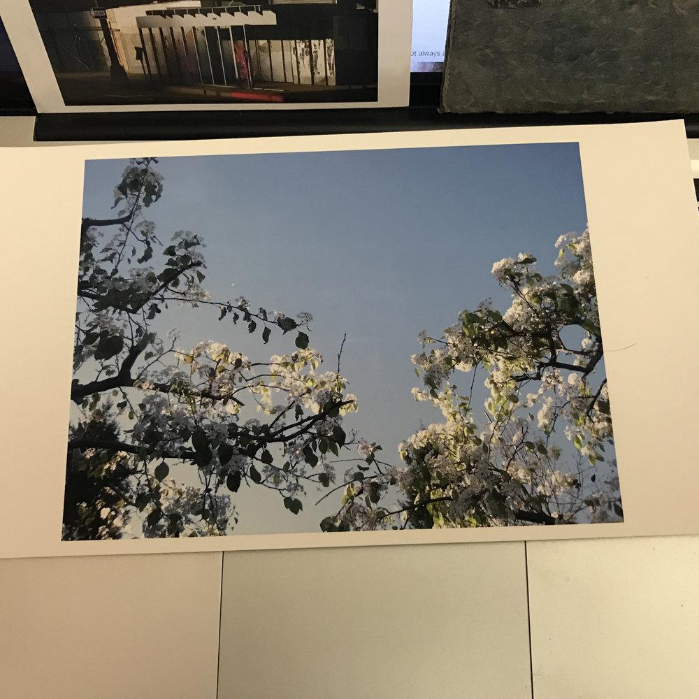 Kristina Simonsen Print Sale #_5075.jpg