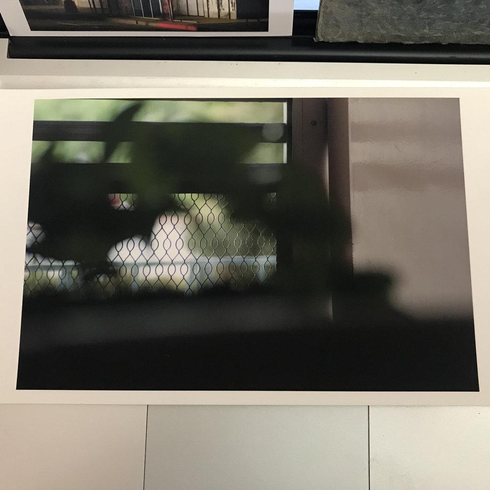 Kristina Simonsen Print Sale #_5078.jpg