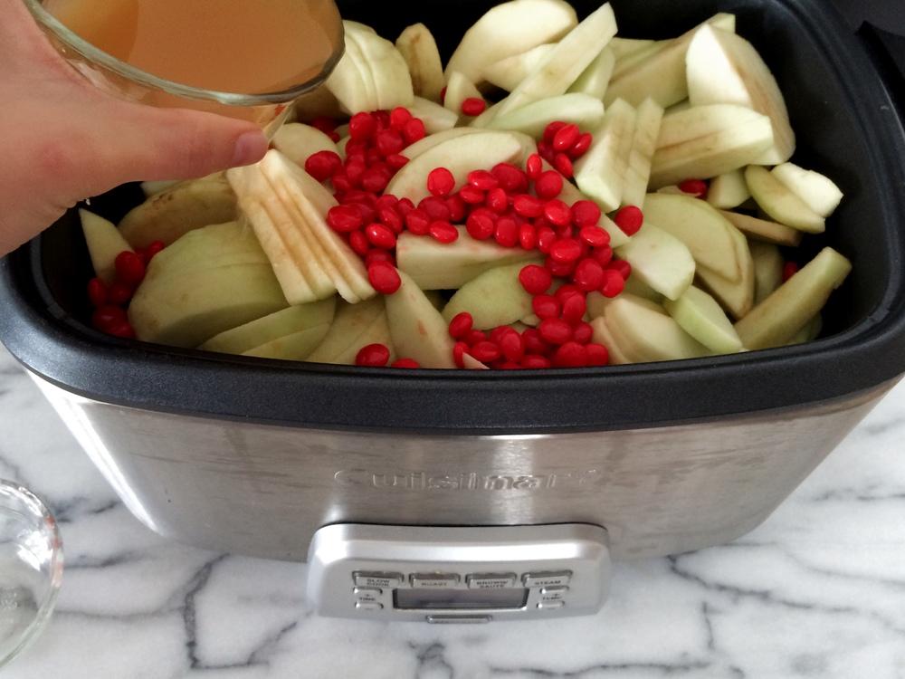 Cinnamon Apple Sauce 04