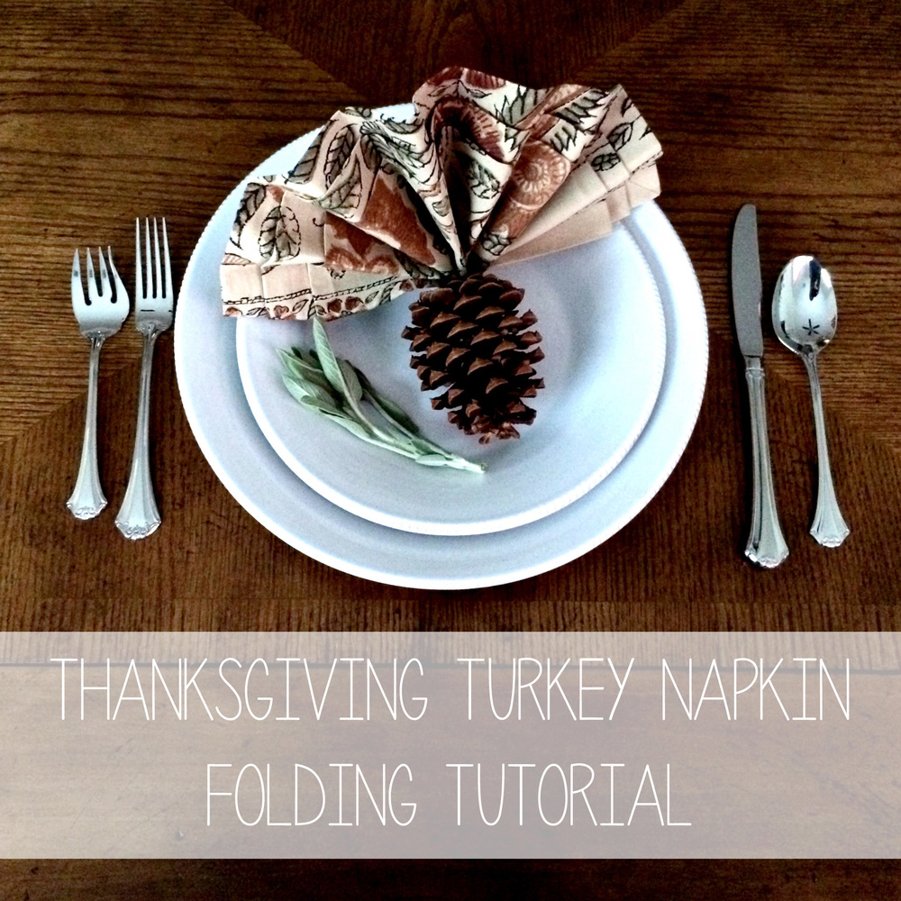 Thanksgiving Turkey Napkin Folding Tutorial (Sugar and Roses) - Title.jpg