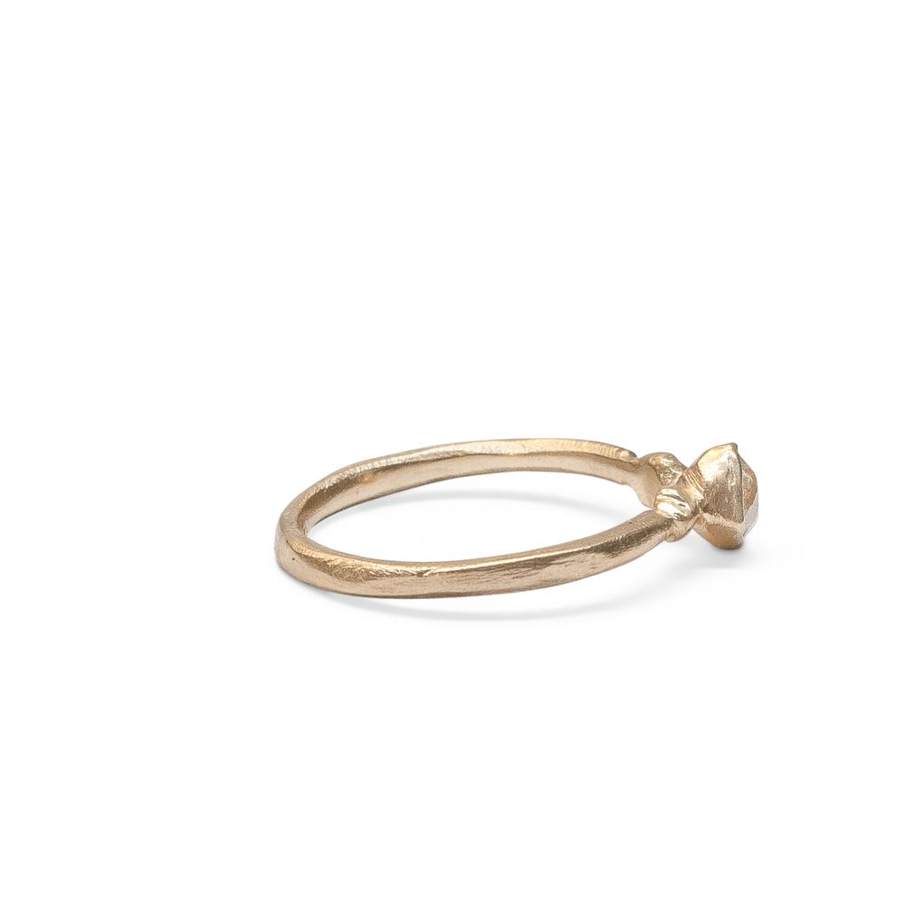 The Venus Ring (2).jpg
