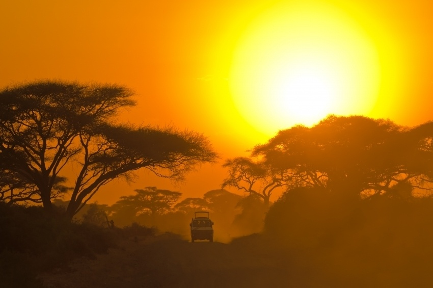 African Safari Sunset 95