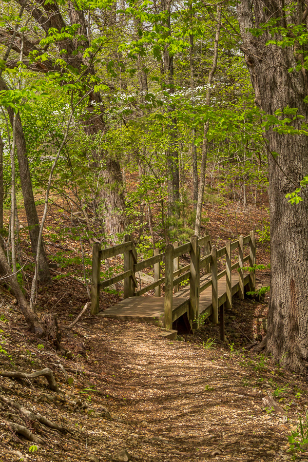 Ha Ha Tonka Trail, Ha Ha Tonka State Park, Missouri