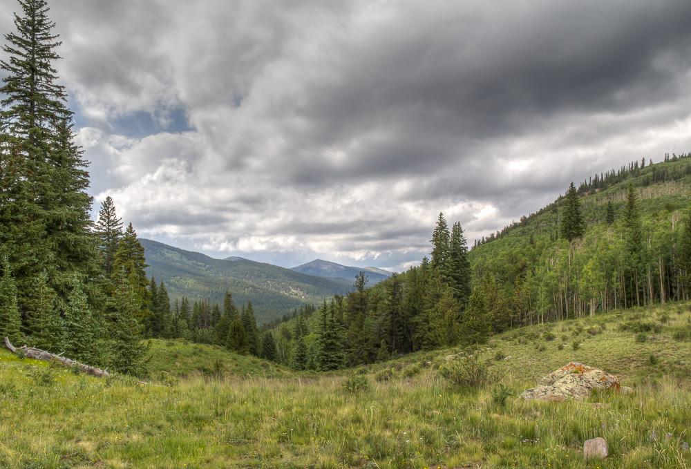 Buffalo Peaks, Pike National Forest, Colorado