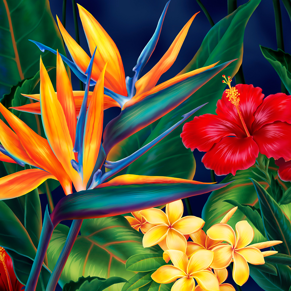 Tropical Paradise Hawaiian Birds of Paradise Illustration