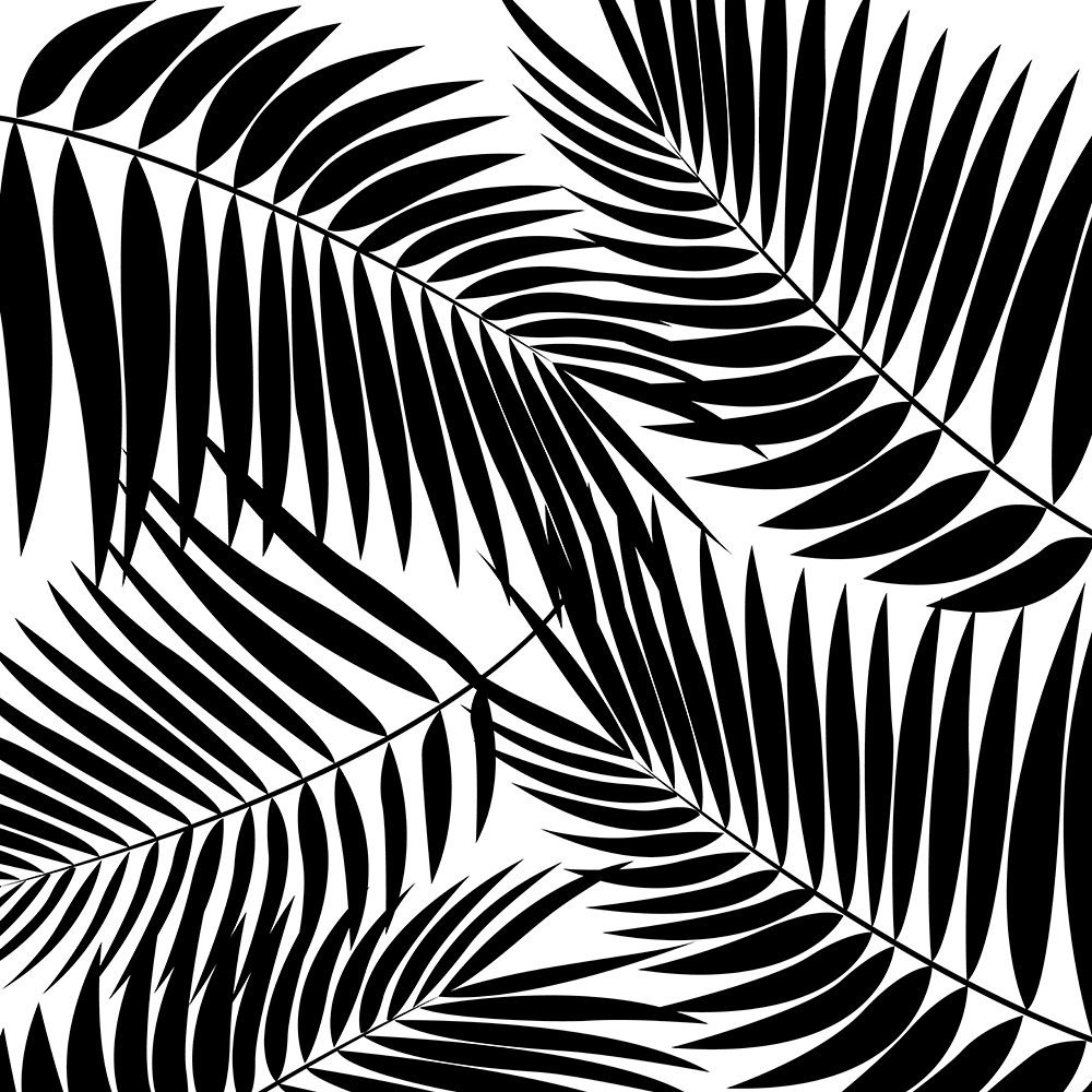 Kona Palms Hawaiian Leaf - White and Black