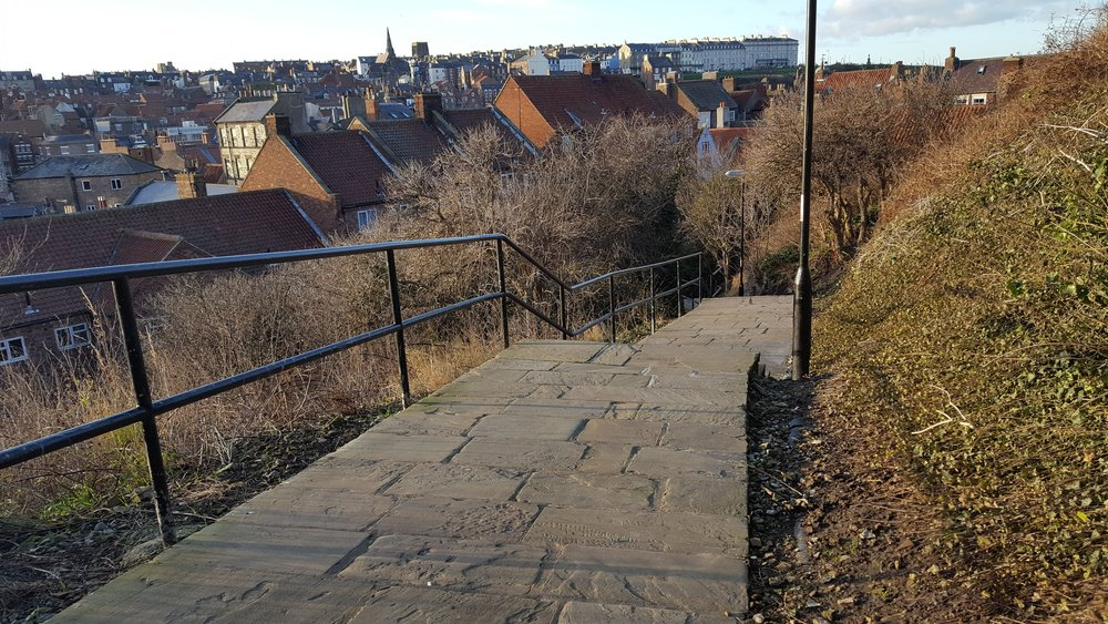 - The area is overlooked by residential flats and used by hundreds of people every week. It is currently neglected but could be transformed into a vibrant and colourful wildlife corridor that would make the heart of Whitby visitors and residents sing!