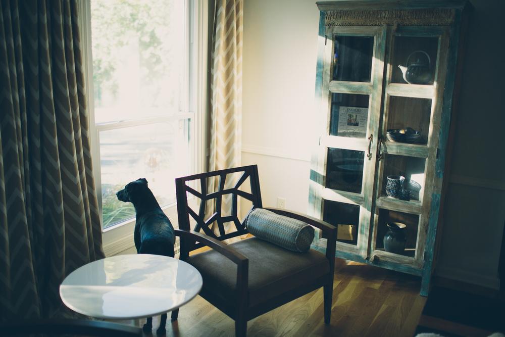 client house_002.jpg
