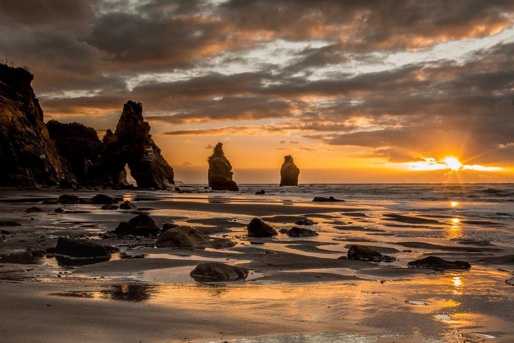 NZ-6652.jpg