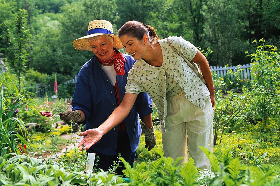 senior-citizen-physical-activity