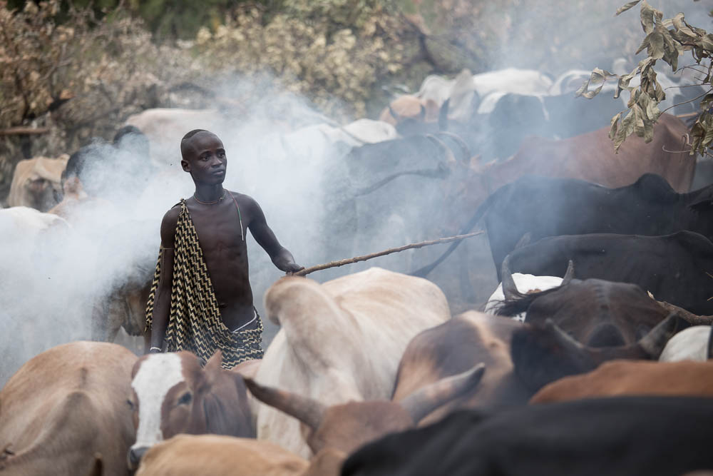 Young Suri man in cattle camp.