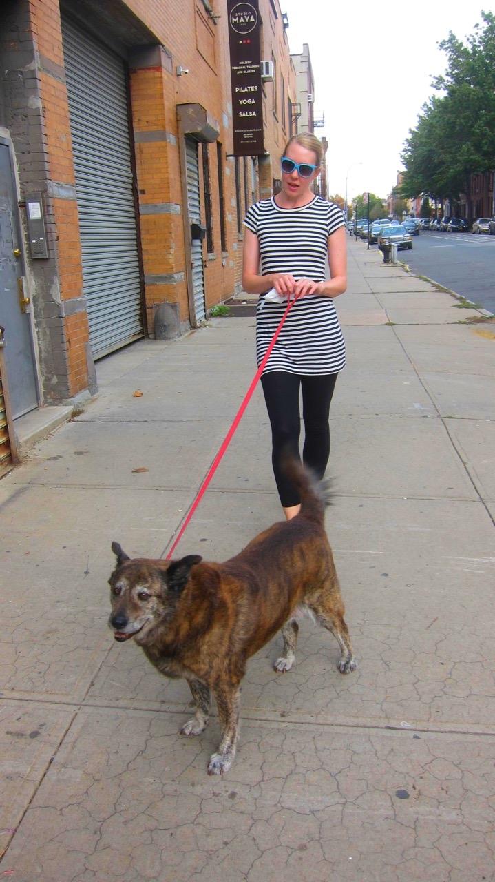 Walking the Dog (Brooklyn)
