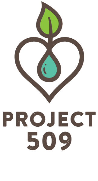 Project 509