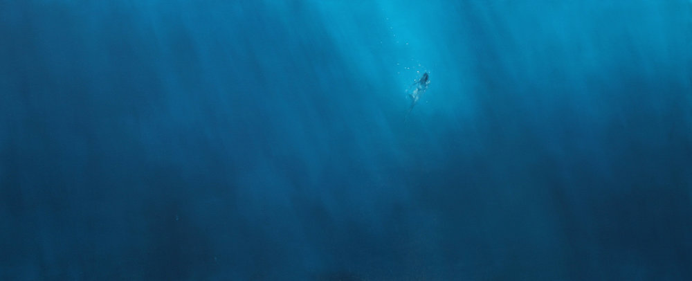OCEANO BAJA 2017.jpg