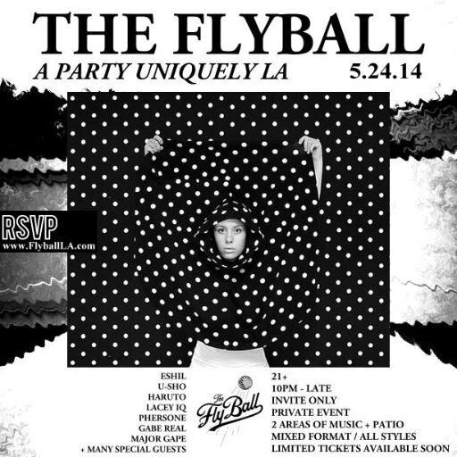 flyball.jpg