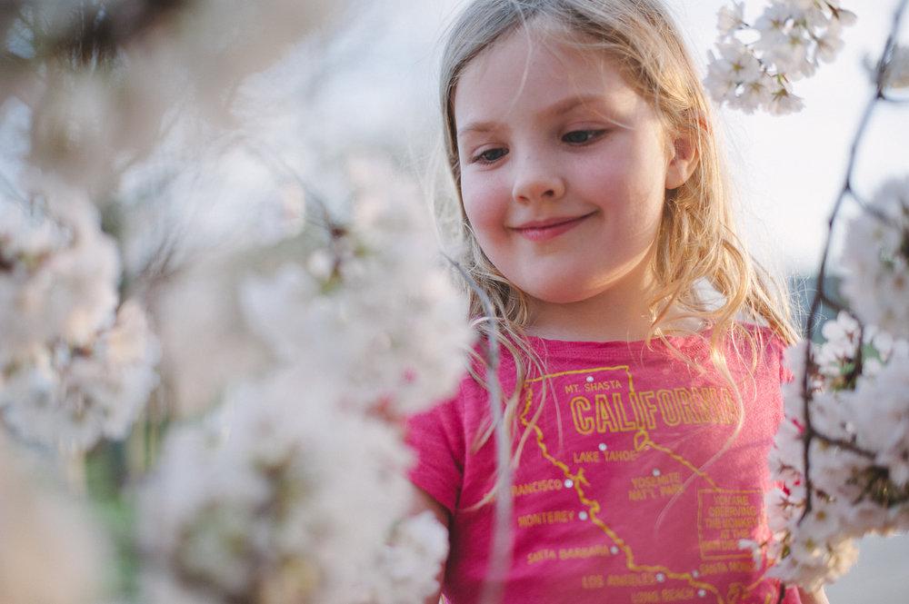 03-kgerhard13-4-blossoms-6.jpg