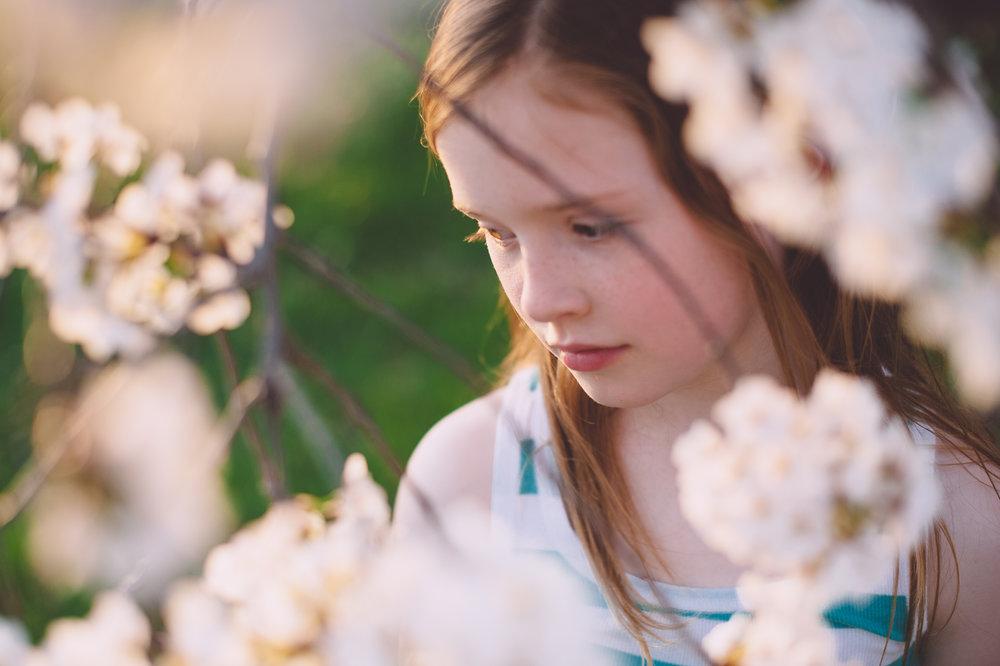 05-kgerhard13-4-blossoms-22.jpg