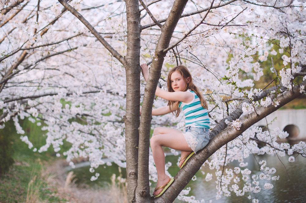 21-kgerhard13-4-blossoms-16.jpg