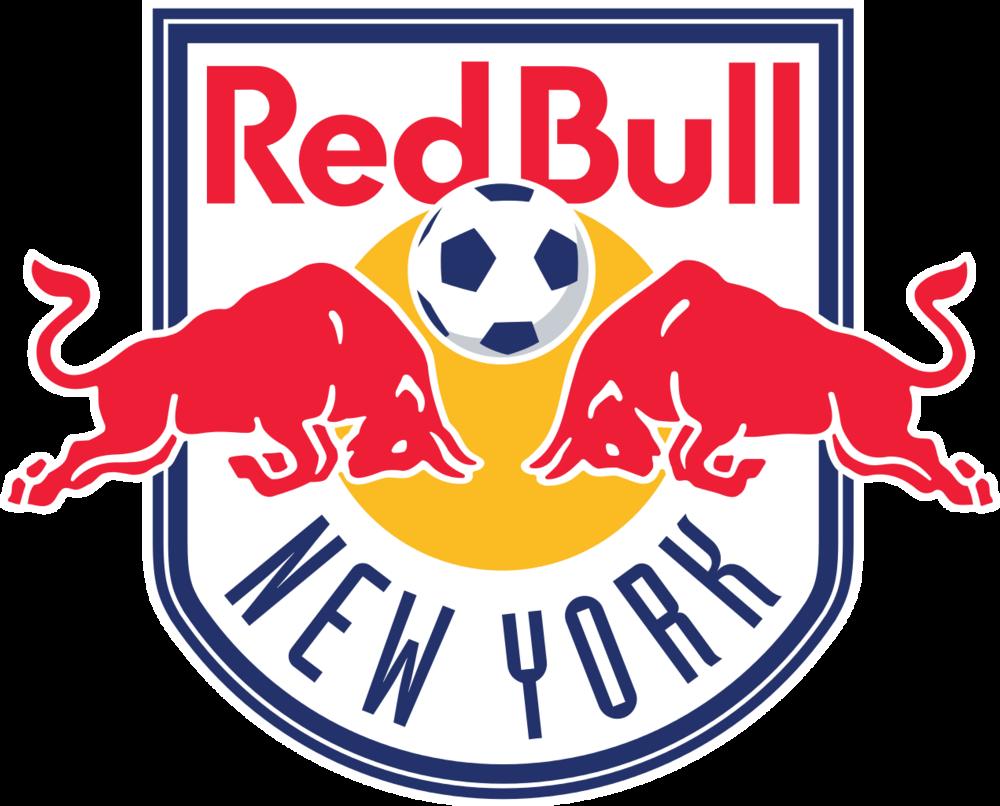 Logo from  nyrb.ussoccerda.com