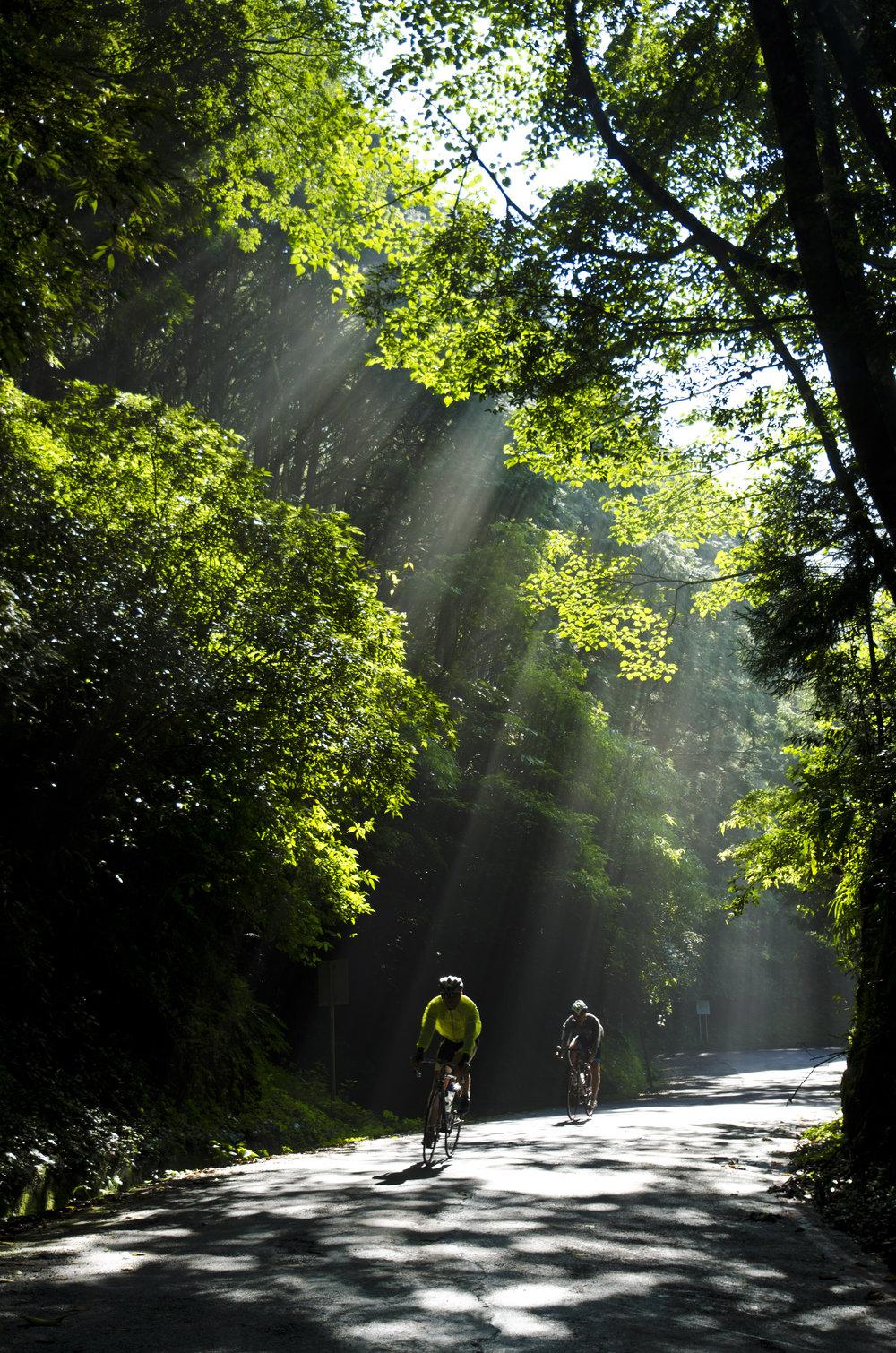Cycling, Xueshan, Nantou.jpg