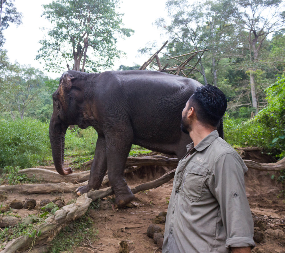 Luis and the elephant right after bathing in the river