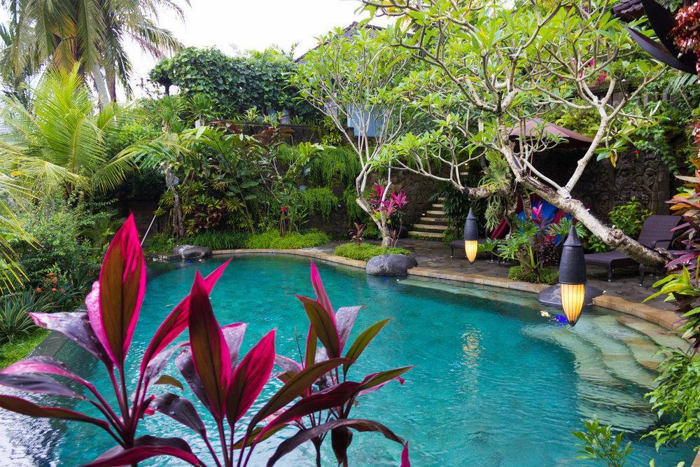 Pool at Dwaraka: The Royal Villas