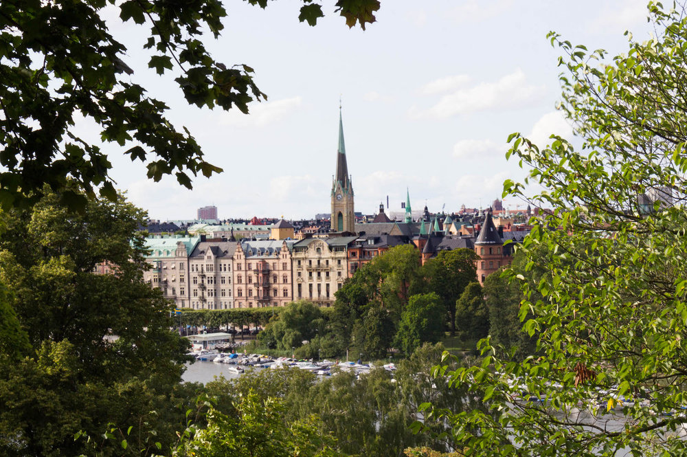 A view of Stockholm through the trees from Skanson (museum)
