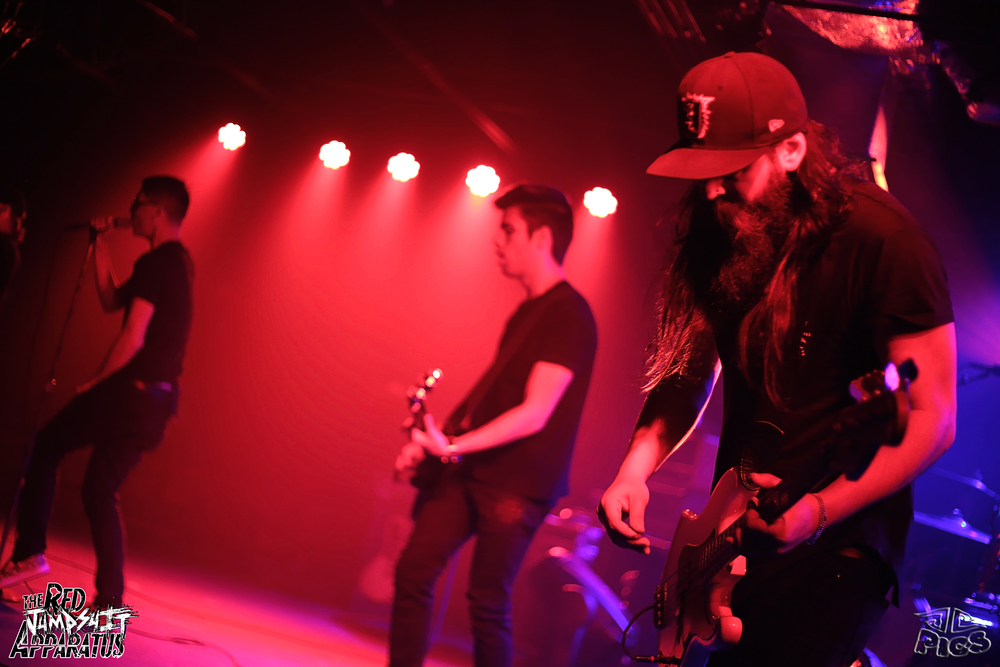 The Red Jumpsuit Apparatus 9B4A9114.JPG