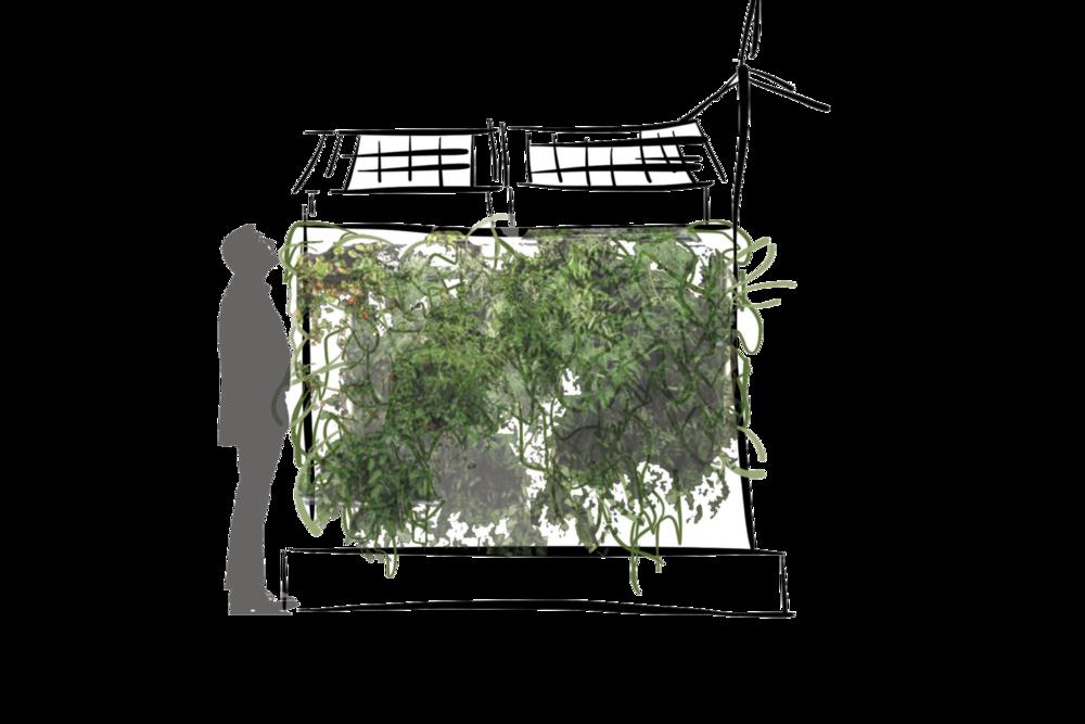 Concept for rooftop vertical gardens. ©2014 Caroline Ingalls