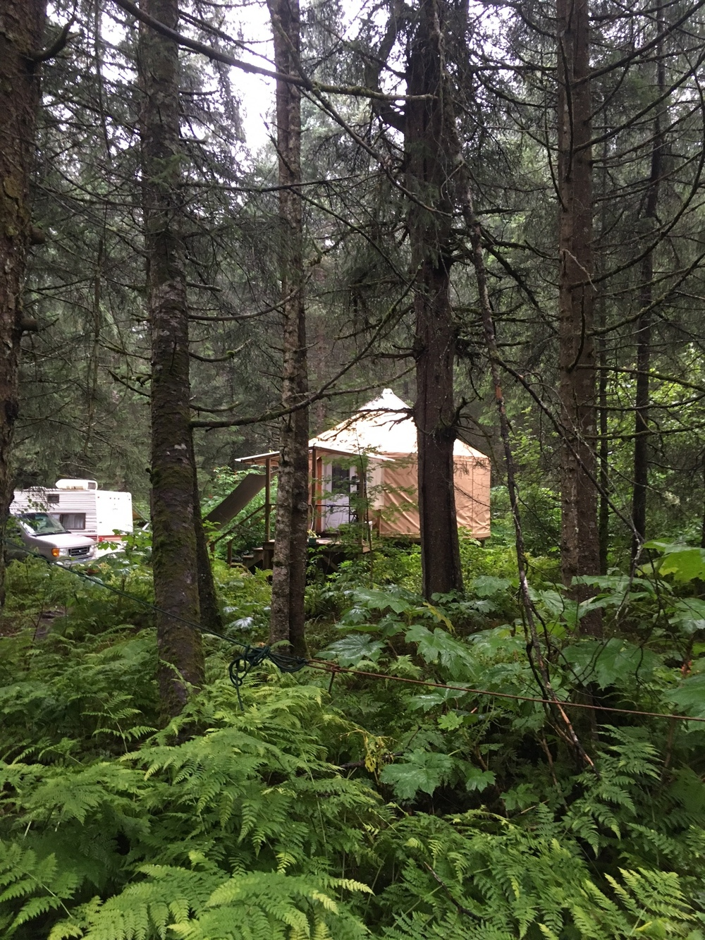 The Sunny Cove yurt