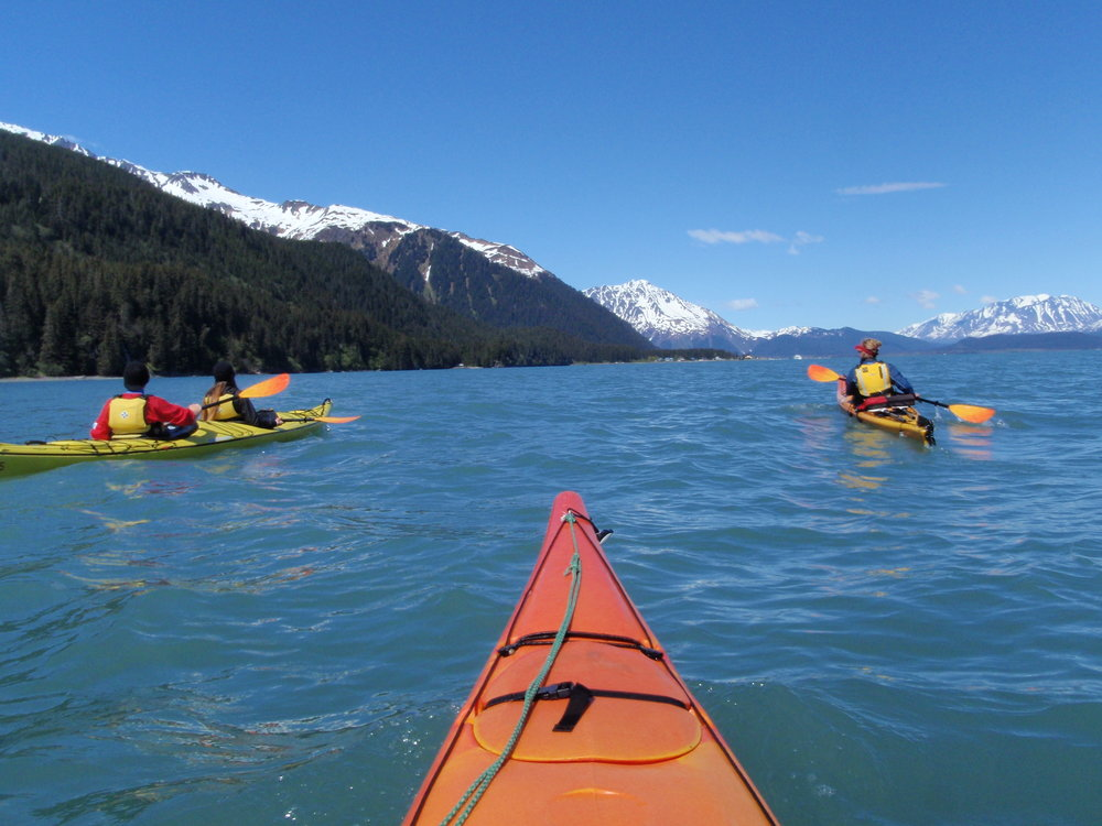 Seward Alaska Sea Kayaking Tour