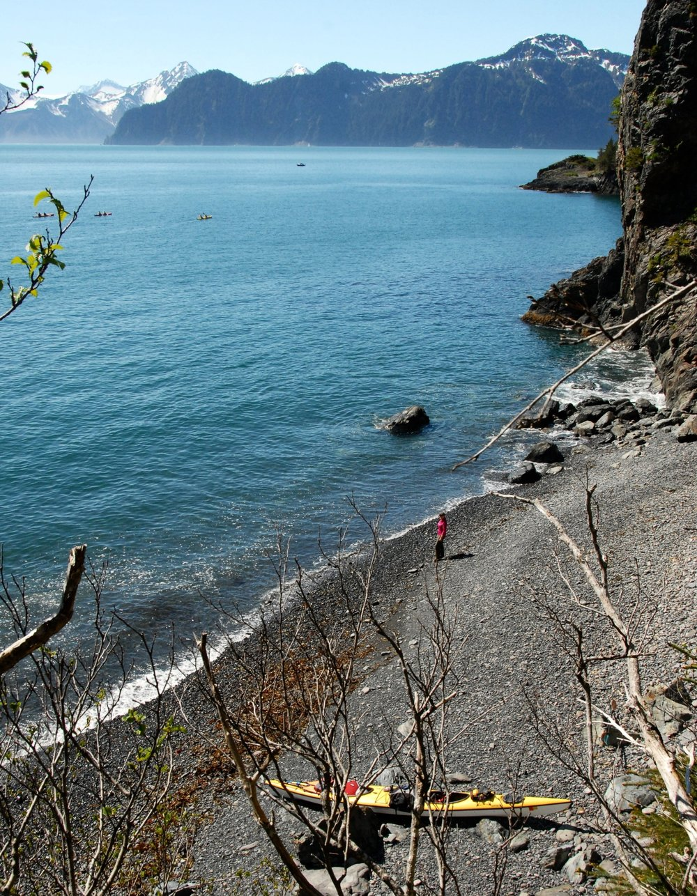Fox Island Full Day Kayaking Tour, Seward, Alaska