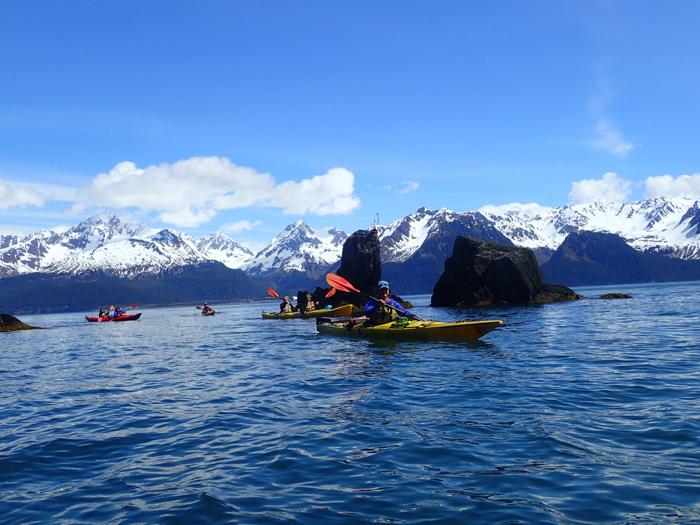 Resurrection Bay Tour - 8am-11am, 12pm-3pm, 4pm-7pm daily.Ages 8 and up.Great for beginners or those with limited time.$75 + tax per person.