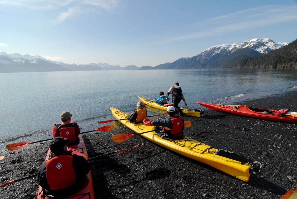 Resurrection Bay Tour - 8:00 am - 11:00 am, ages 8+5/15/19 - 9/6/192.5 hr KayakingTypically Calm Sea ConditionsHighlightsResurrection Bay, Small Marine Mammals, Shore Birds