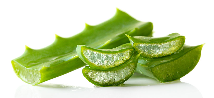 hydrating-organic-aloe-vera-leaves.jpg